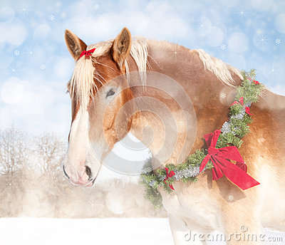 Sweet Christmas themed image of a draft horse