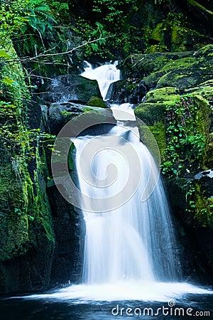 Free Sweet Creek Falls, Oregon Stock Image - 67806761