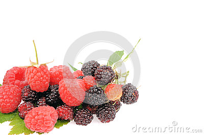 Sweet fresh raspberry fruit on white