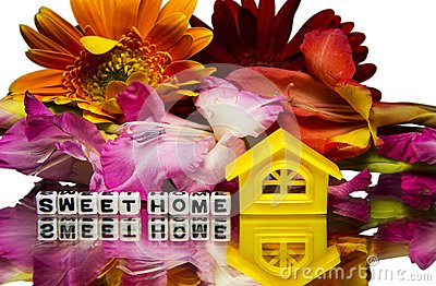 Sweet home with flowers