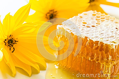 Sweet honeycomb with honey