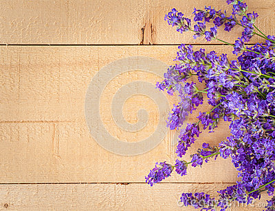 Sweet Lavender Flowers on Rough Wood Horizontal