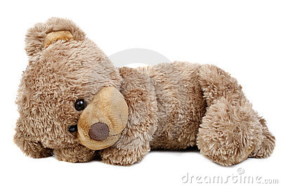 Sweet lying bear