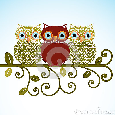 Sweet Owls on a perch