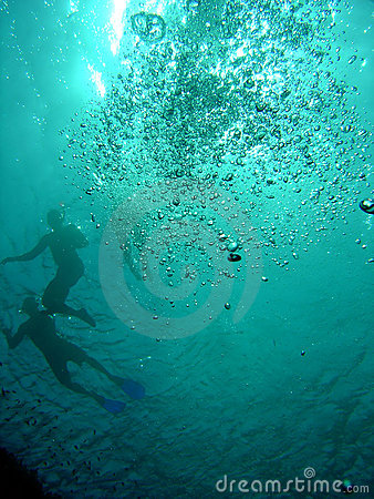 Swimmers and snorkellers