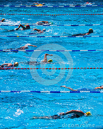 Swimmers during triathlon Editorial Stock Image