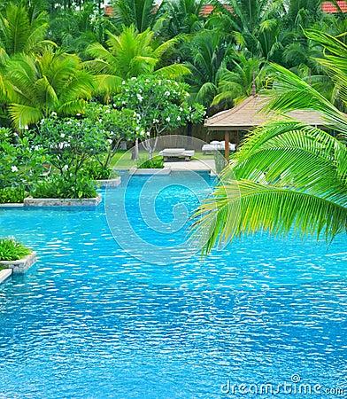 Free Swimming Pool Stock Photos - 14857223