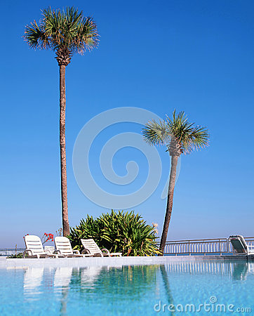 A swimming pool in daytona beach florida royalty free stock image image 37504286 - Palm beach swimming pool ...