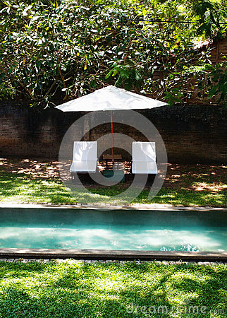 Free Swimming Pool In Tropical Garden Stock Image - 29804441