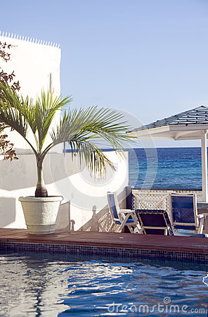 Swimming pool lounge chairs  tropical plant Caribbean Sea St. La