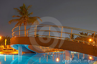 Swimming pool, night and palm trees