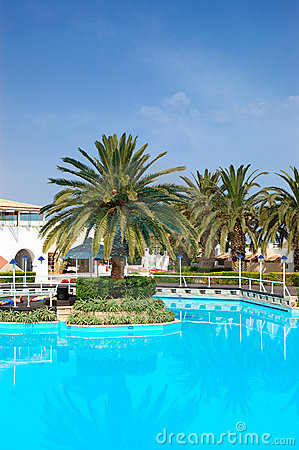 Swimming pool and palm trees at the luxury hotel