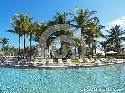 Swimming pool in a resort