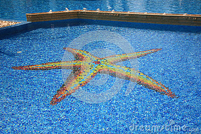 Swimming pool starfish