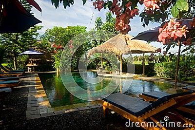 Swimming pool in a tropical resort