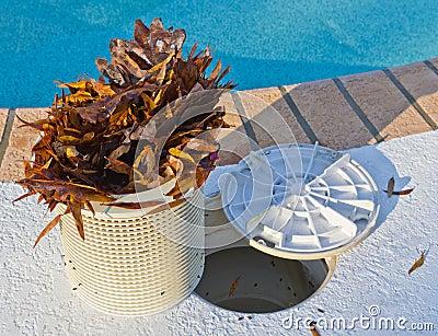 Swimmingpool-Korb-Reinigungsmittel