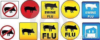 Swine Flu Signs