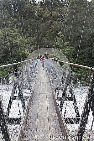 Free Swing Bridge Stock Photos - 4669443