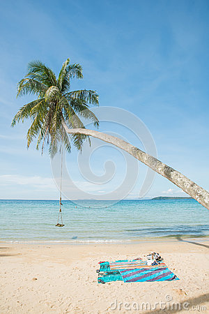 Free Swing Hang From Coconut Tree Over Beach Sea. Phuket,Thailand Stock Image - 48832041