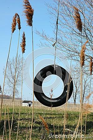 Swing tire