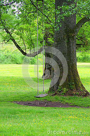 Free Swings In Park Stock Images - 70310774
