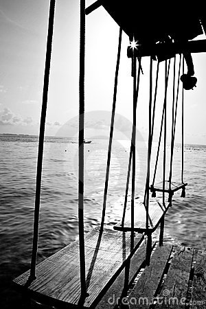 Swings by the ocean