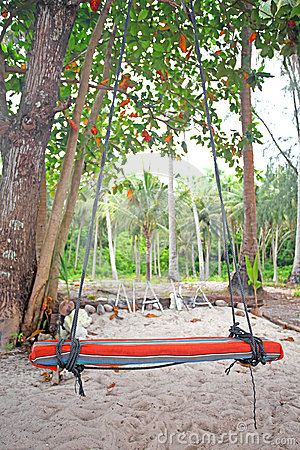 Swings and palm on the sand
