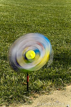 A swirl in the lawn