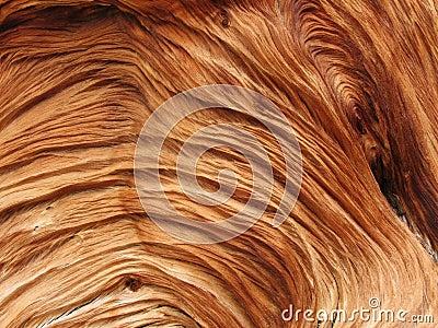 Swirled wood texture