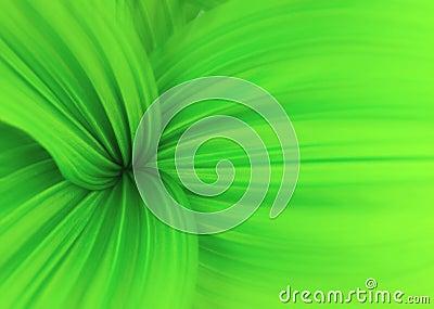 Swirls of green
