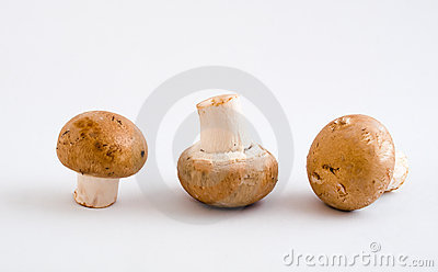 Swiss Brown Button Mushrooms