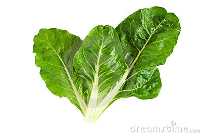 Swiss Chard Royalty Free Stock Images - Image: 15458379