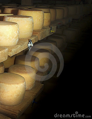 Free Swiss Cheese Royalty Free Stock Photo - 15689745