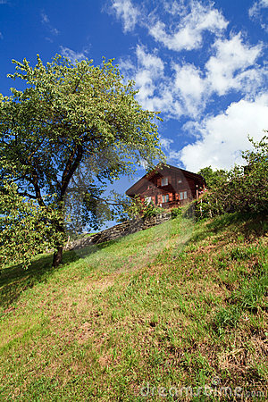Swiss Mountain Home