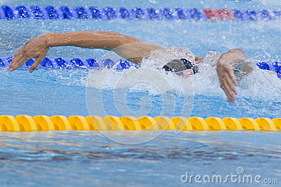 SWM: World Aquatics Championship - Mens 4 x 100m medley final Editorial Image