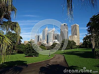 Sydney from Botanic Gardens