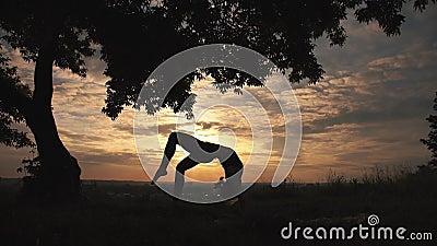 Sylwetka kobiety ćwiczy joga przy pięknym wschodem słońca zbiory wideo