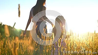Sylwetka macierzysty ia odprowadzenie z jej córką w polu w lecie, chwyt ręki, rodzinny pojęcie zdjęcie wideo