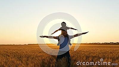Sylwetka ojca i dziecka o zachodzie słońca Chłopiec podnosi ręce w powietrzu imitując lot na wspaniałym zachodzie słońca zbiory wideo