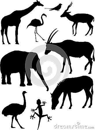 Sylwetki wektorowe zwierzę.