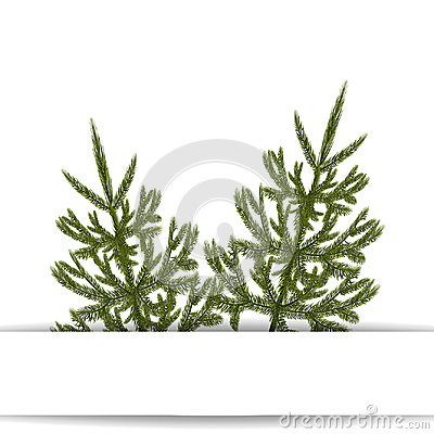 Symbol of the New Year. An image of two green fir trees without a mesh and a gradient. Place for advertising Vector Illustration