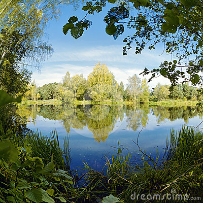 Symmetrical landscape with trees at the lake