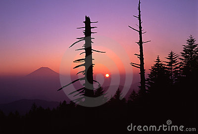 Symphony at Dawn