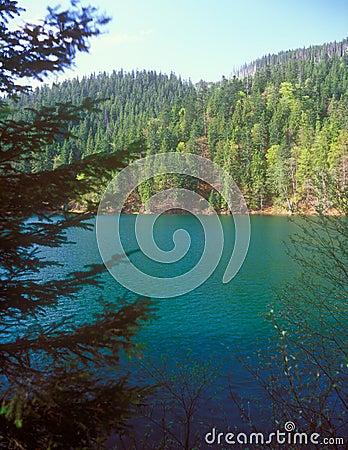 Synevir lake.