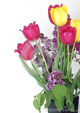 Syringa and tulips bouquet