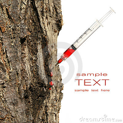 Syringe inserted into tree trunk on white