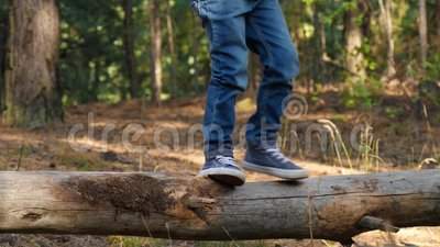 Szczęśliwe małe dziecko wchodzi po kłębie w lesie, pokonując przeszkody i rozwijając odwagę i zręczność Przyszłość i zbiory