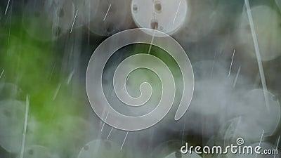 Tło z deszczem zbiory wideo
