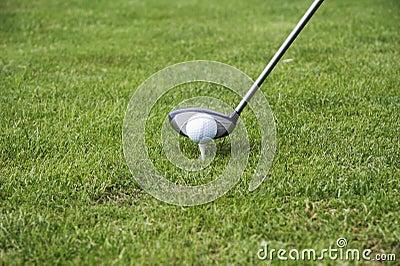 Té-vers le haut la bille de golf 02