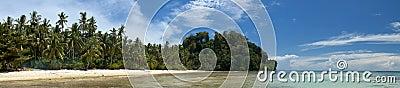 Türkis-tropisches polynesisches Paradies-Palm Beach-Ozean-Meer Crystal Water Borneo Indonesia